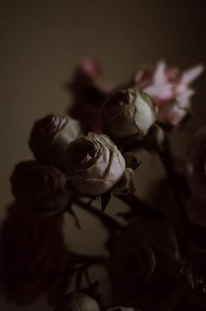 Pinkstilllife-24_edited.jpg