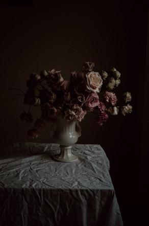 Pinkstilllife-6.jpg