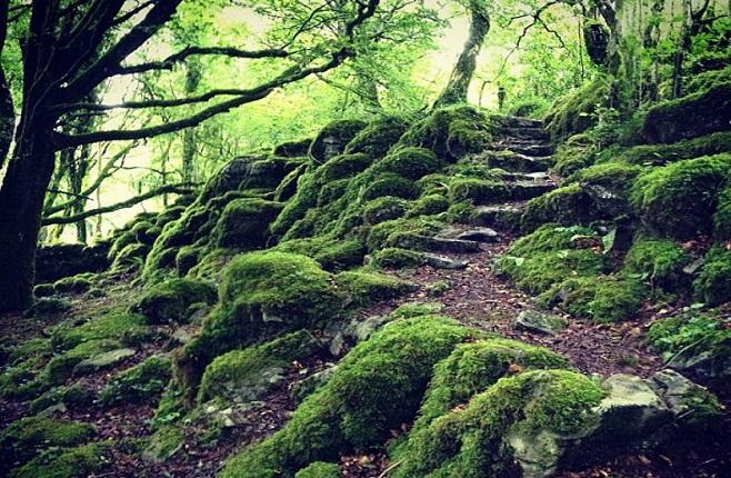 Knockma Hill