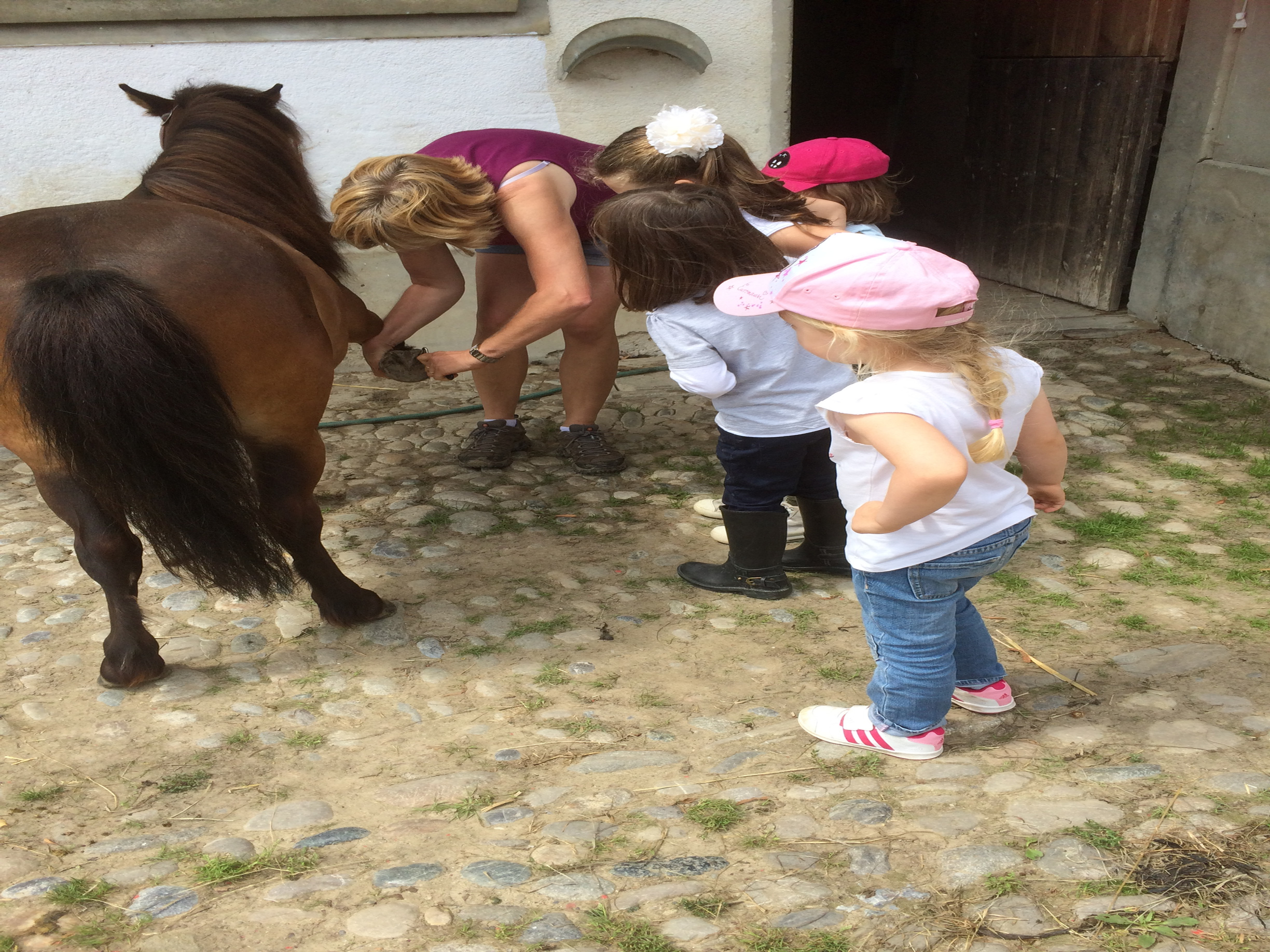 Après-midi poney + de 4ans