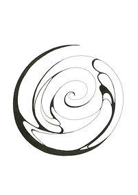 evolution condensed spiralrev.jpg
