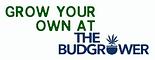 GrowYourOwnAt Budgrower.png