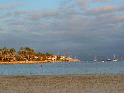 Härligt strandliv i Alcudia, Mallorca