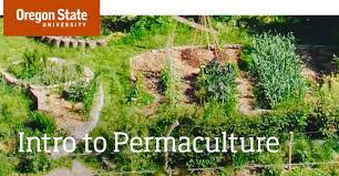 OSU Offers Free Online Permaculture Class