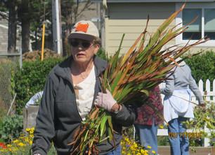 Master Gardeners Remember Betty Bahn