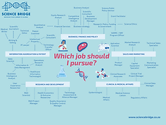 career map new.png
