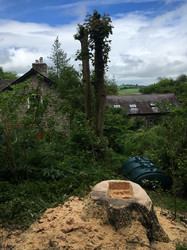 Carving a Planter in Clun