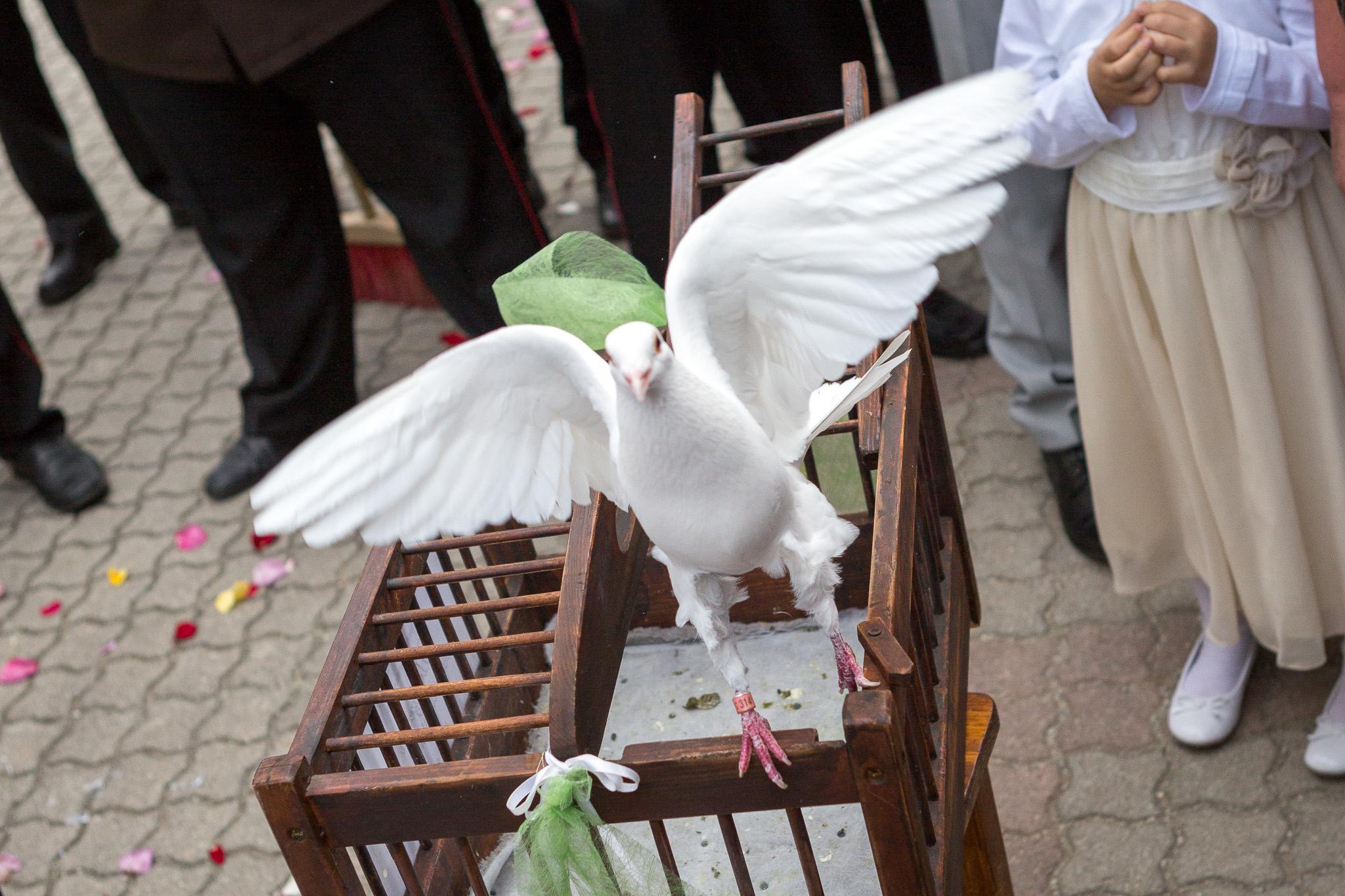 Hochzeit_Monika_Harald_032.jpg