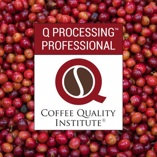 Coffee Quality Institute