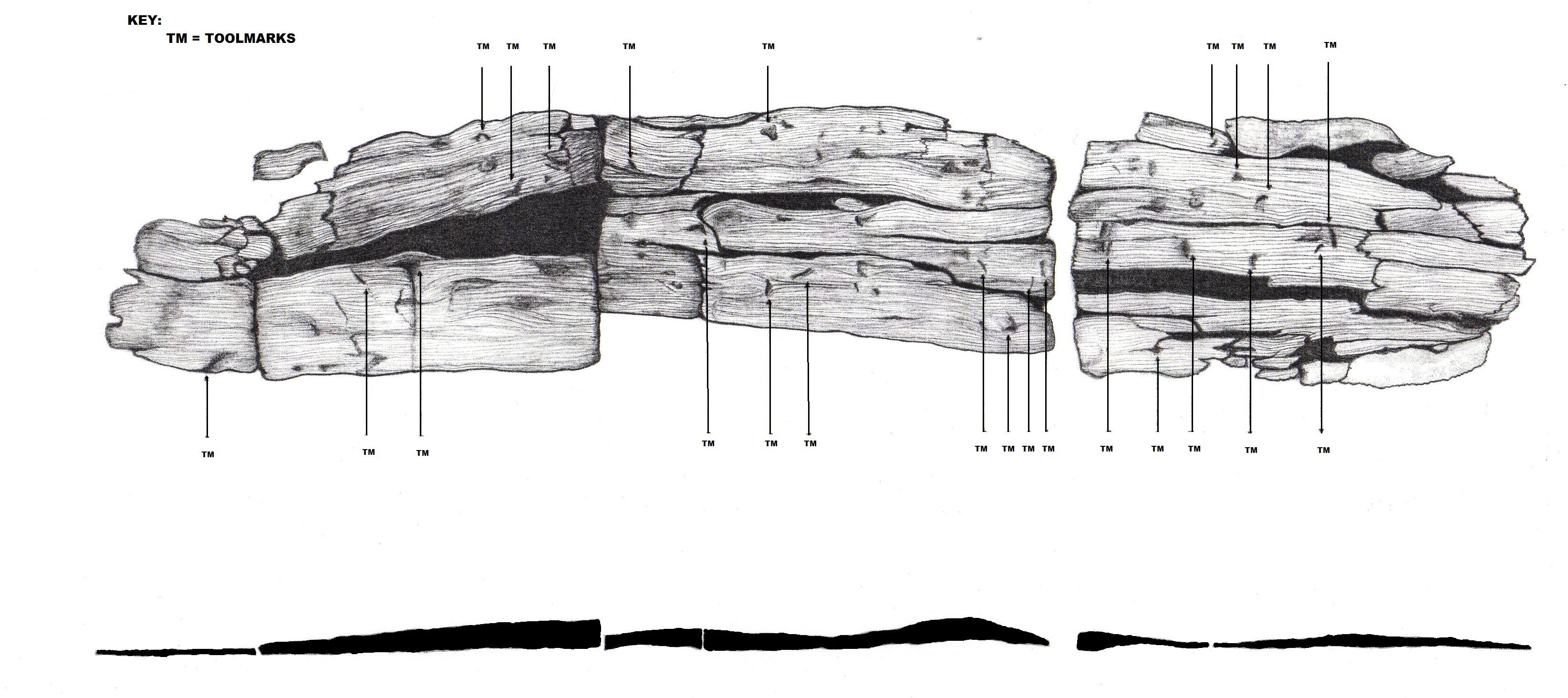 Bronze age -wooden plank from a Fulacht