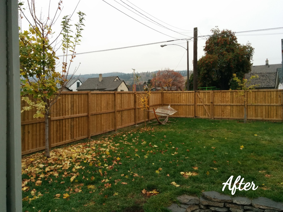 After: New Fence