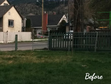 Before: New Fence