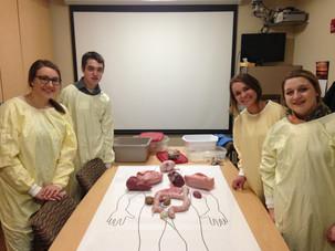 Hands on Health Day with Seneca, Wauzeka-Steuben, and Galesville-Ettrick-Trempealeau High Schools