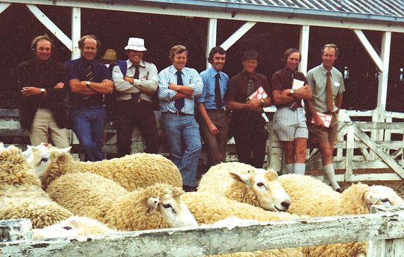 1978 North Island Breeders at the Gore S