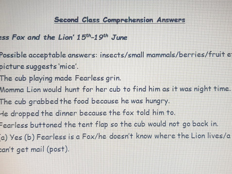 Second Class Comprehension answers 15th-19th June (Ms Naughton)