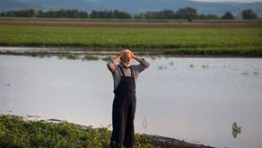 Gesunder Boden: Das Rezept gegen Starkregen und Dürre