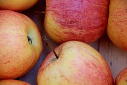 Apfel regenerativ.jpg