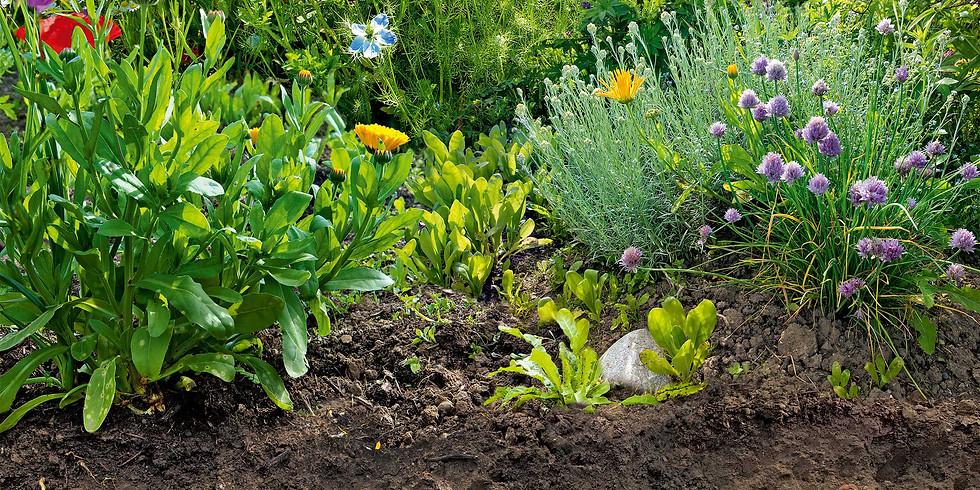 Naturgartentag Boden von Bioterra