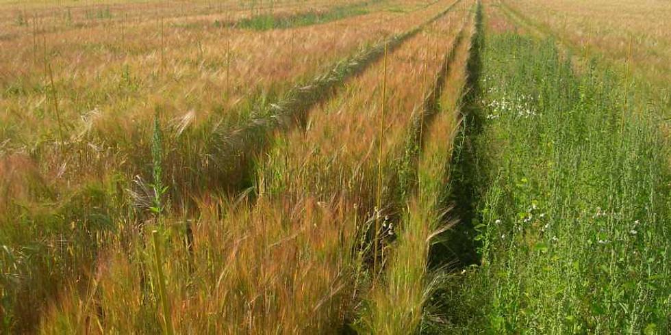 Nationale Ackerbau-Tagung