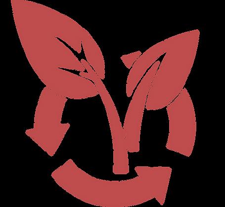 Regenerativ-Logo-auf-Transparent.png