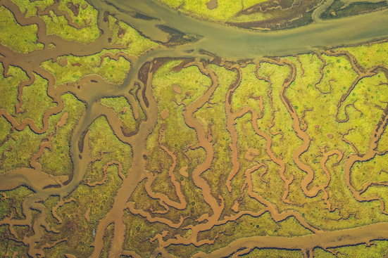 Tidal Creek Mapping