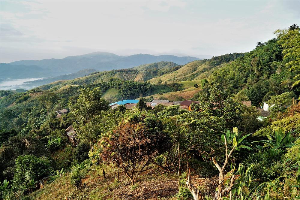 Village Chiang Rai Thailand