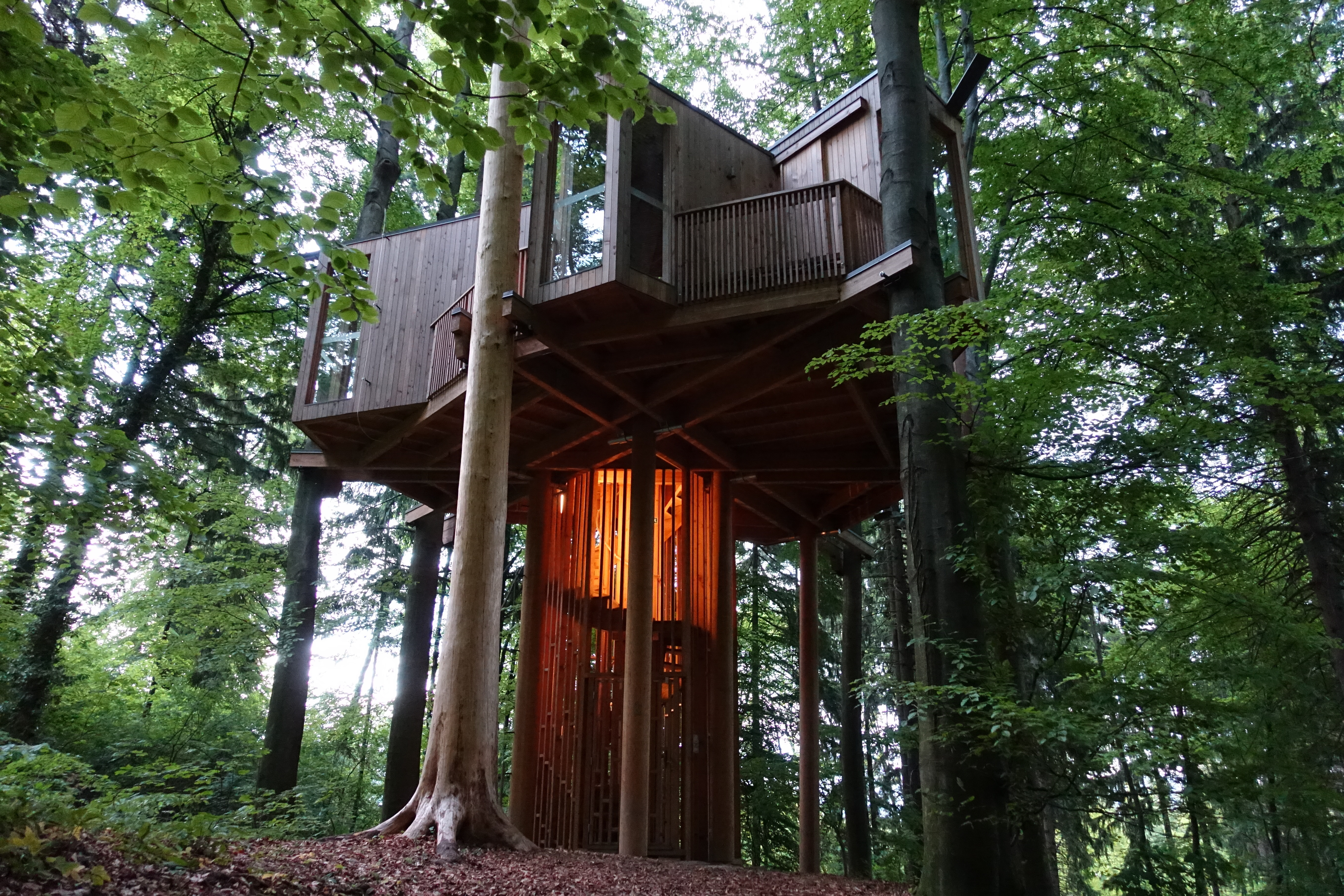 Tree top house shutterstock_636048011 co