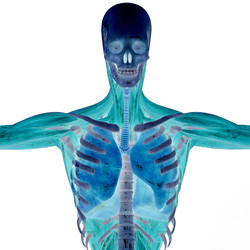 Health and Medicine Master shutterstock_