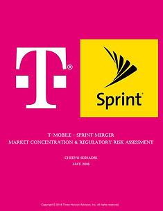 T-Mobile-Sprint Merger Regulatory Risk Assessment