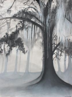 New Orleans Moss - Edition VIIII (2020)