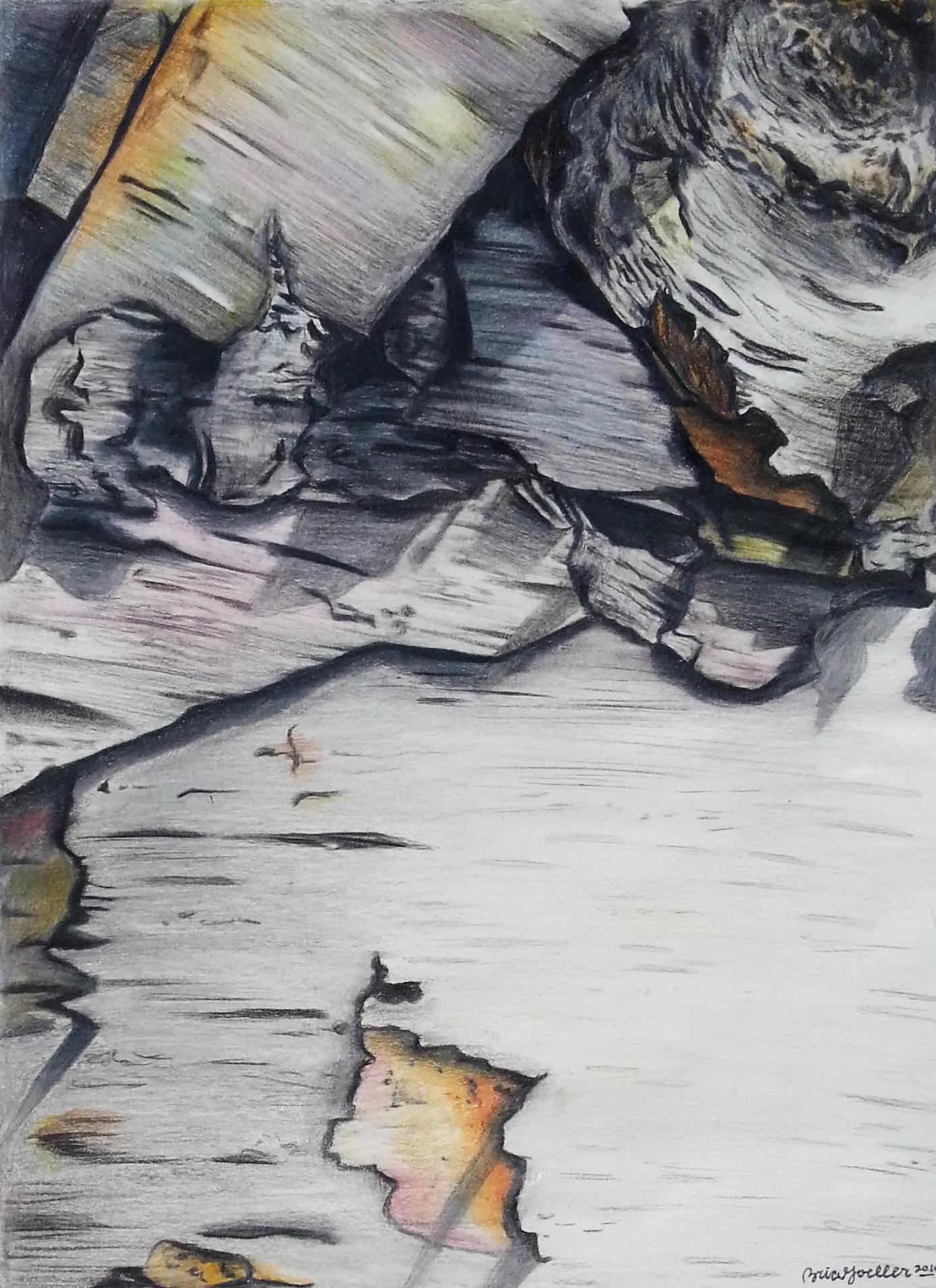Tree Bark (2014)