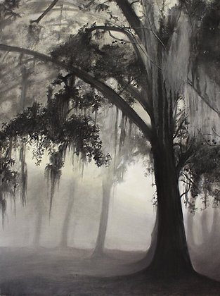 """Signed Print of """"New Orleans Moss"""""""