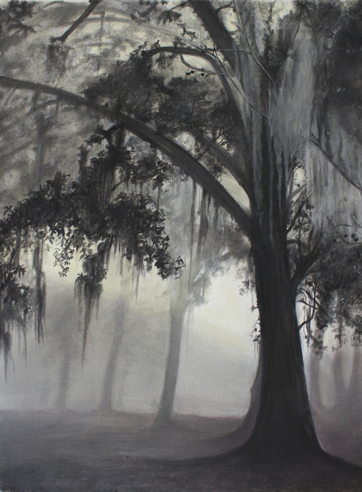Large New Orleans Moss (2020) - GIFTED, MORE AVAILABLE FOR $175