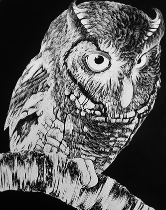 "Signed Print of ""Owl"""