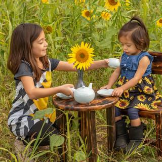 Sunflower sisters-93.jpg