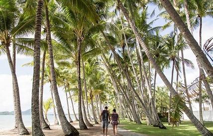 Walks on Palm Cove