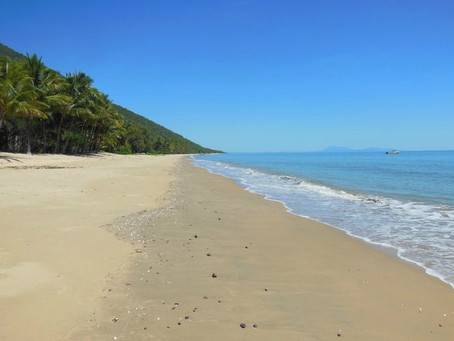 New Palm Cove Accommodation?