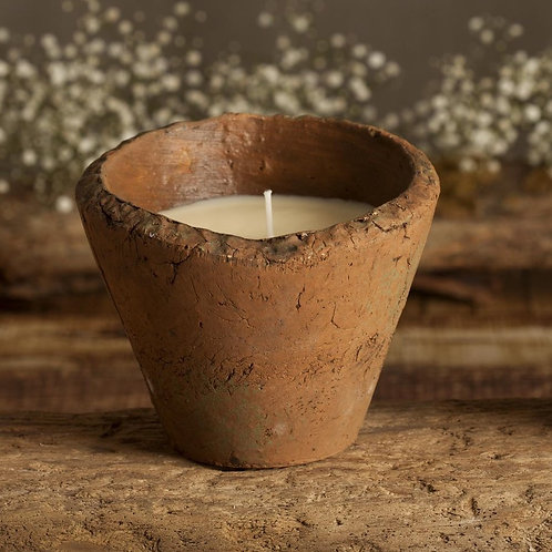 Bluebell Wood Scented Large Pot