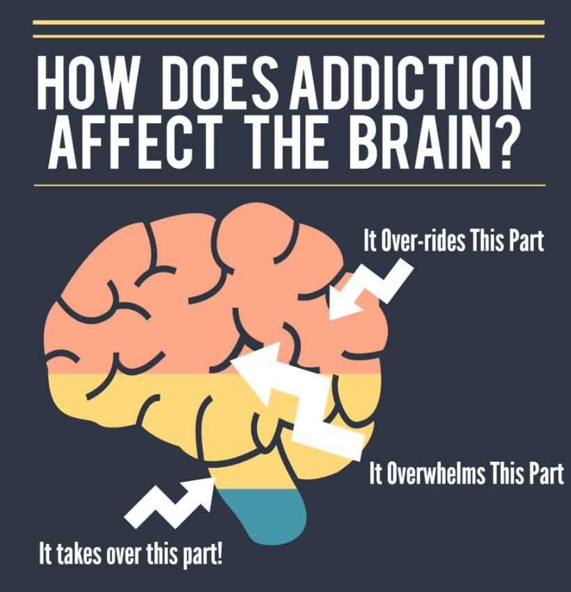 How Drugs Effect the Brain
