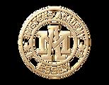 Masters academy transparant Gold logo.pn