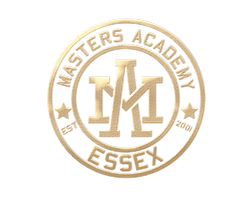 Masters academy transparant Gold logo.pn