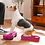 Thumbnail: FitPaws National Canine Fitness Month KIT (3 Sets in one)