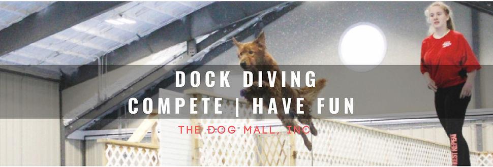Dock Diving Web Banner.jpg