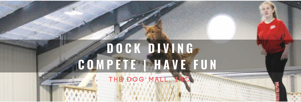 Dock Diving Web Banner.jpg