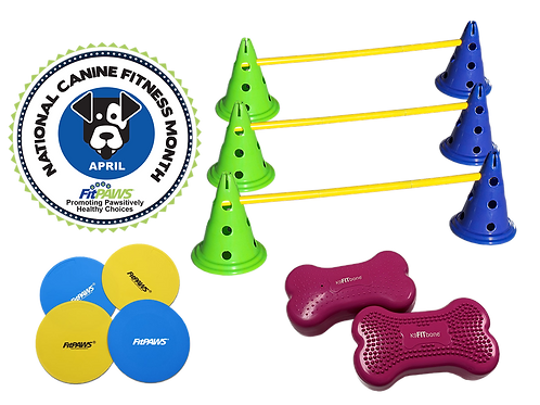 FitPaws National Canine Fitness Month KIT (3 Sets in one)