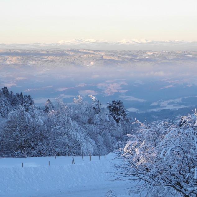 le massif du sancy depuis la terrasse.jp