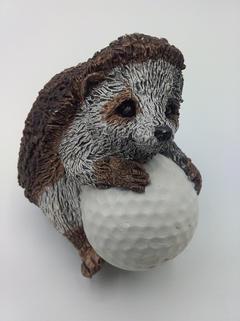 A hedgehog with golf ball