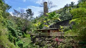 Un après-midi au zoo de Martinique