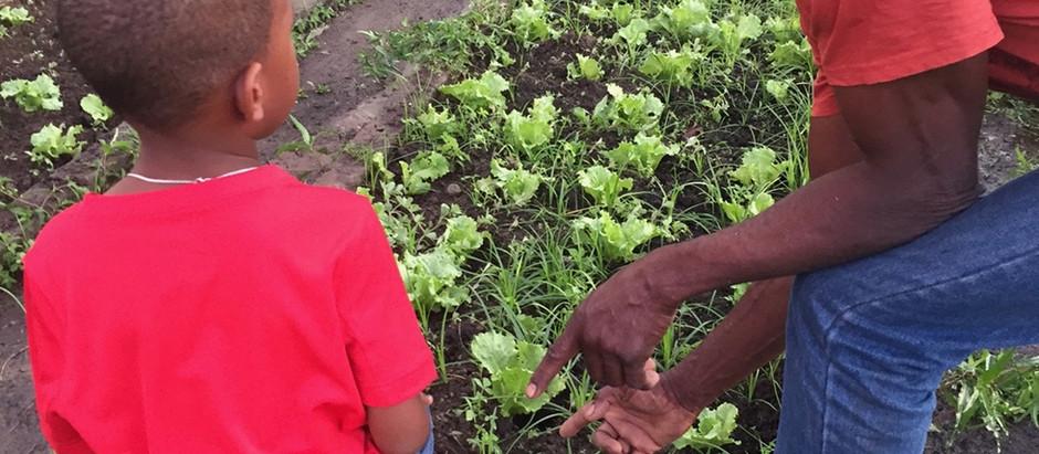« Message à mes stagiaires à propos du métier d'agriculteur »