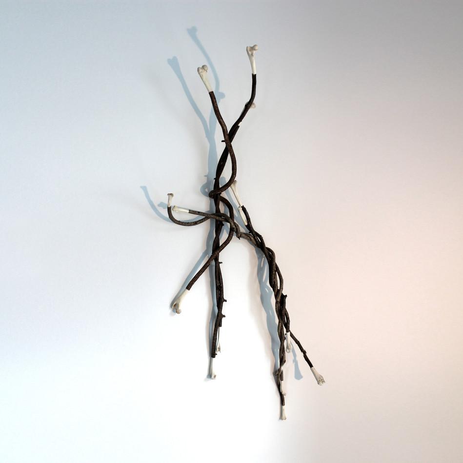 Intertwined Limbs